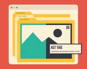 How to use alt tags for SEO images